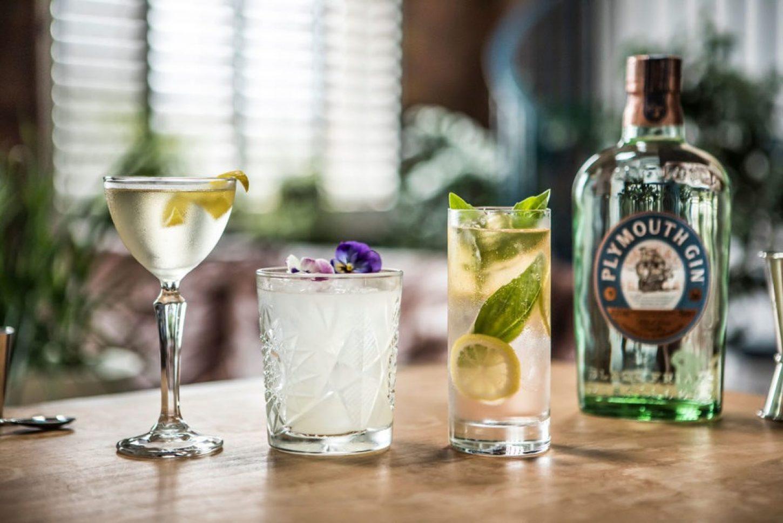 Plymouth gin – stalnica koktajl receptov