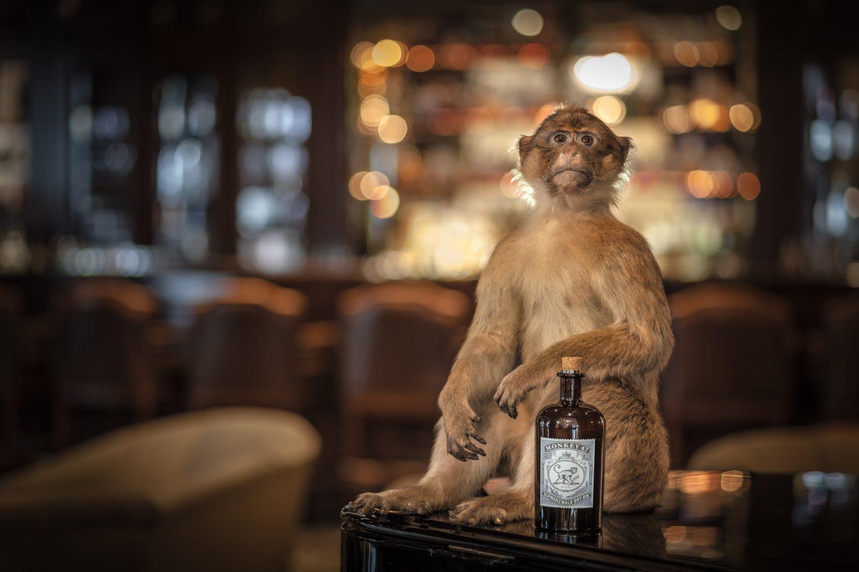 Pernod Ricard – ekskluzivni lastnik znamke Monkey 47